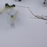 Tree skiing in Courmayeur