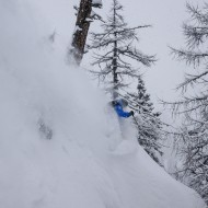Tree skiing in Courmayeur - Chamonix powder report