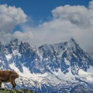 Exploring moyenne montagne