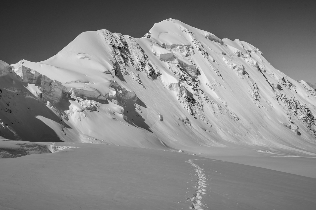 Fresh tracks on Grenz glacier past Liskamm north face - Monte Rosa Glacier Trek