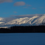 Scouting ski tours Hokkaido