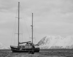 Ski and Sail Lyngen