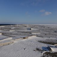 Svalbard stories
