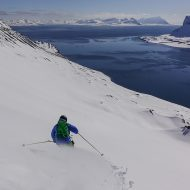 Summit to sea on Svalbard