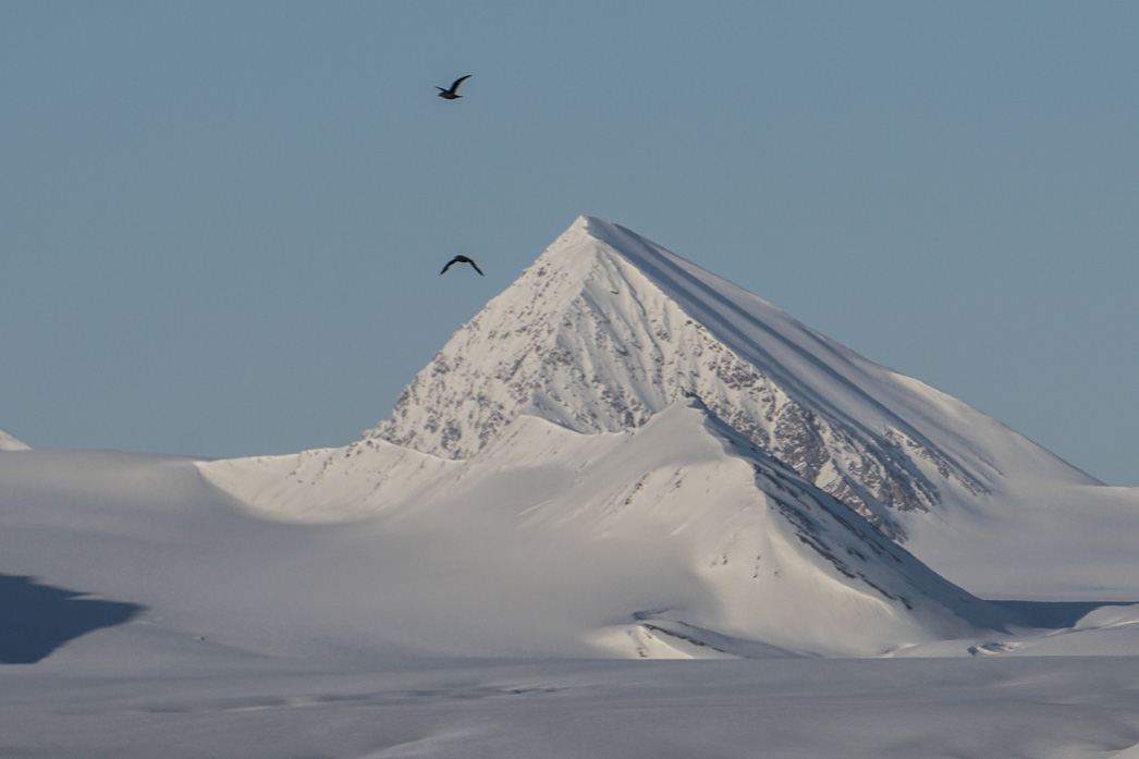 Spitsbergen Ski and Sail