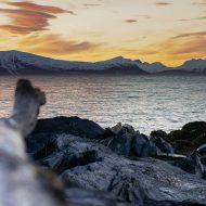Lyngen fjords