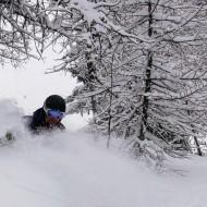 Tree skiing in Courmayeur