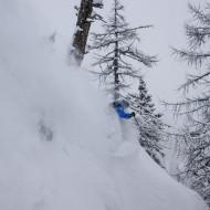 Tree skiing in Courmayeur - Chamonix powder report