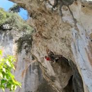 Grotta del Edera