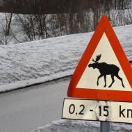 Scandinavian roads