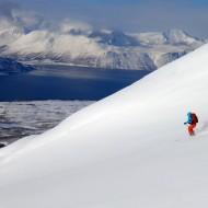 Skiing Sofiatind