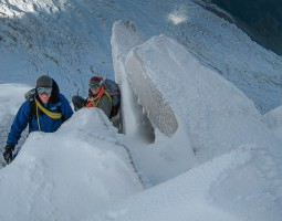 Advanced Alpine Course