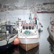 Henningsvaer harbor