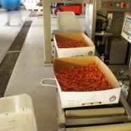 The shrimp factory next door delivers dinner