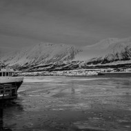 Thin ice in the harbour during mid-winter